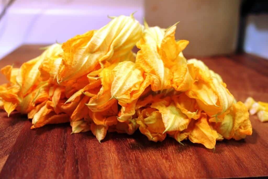 Quesadillas de Flor de Calabaza