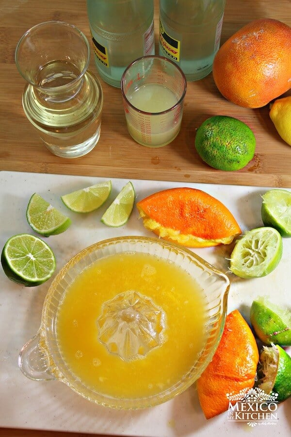 Naranjada Limonada Preparada, forma de prepararlas